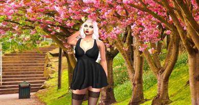 Entice dress_005